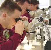 ILEA students at microscopes