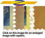 Split screen images of stamp edges that match. Notice overlapping edges revealed with transmitted light.