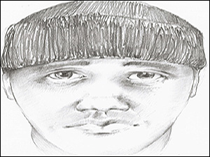 Composite Drawing of Jewelry Theft Ring Member