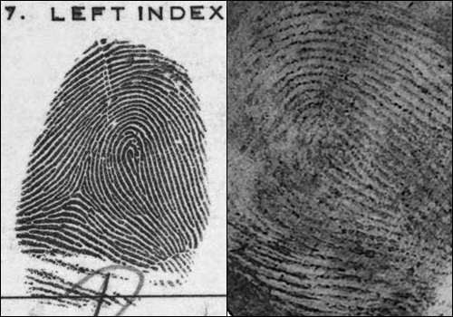 Master and latent fingerprints