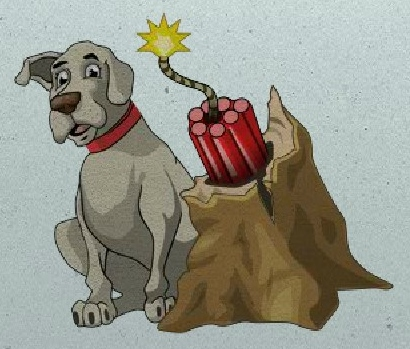 About Our Dogs: Chemical Explosives Dogs