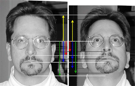 Figure 1 demonstrates that a change in pose angle (when the subject tilts his head back) results in an alteration of the distances measured between facial features.