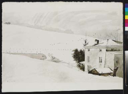 """Forged Andrew Wyeth Painting Entitled """"Snow Birds"""""""