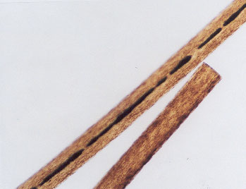 Figure 71 is a photomicrograph of scissor-cut hair.