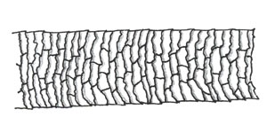 Figure 89 is a diagram of imbricate scales.