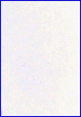 Figure 1A is a photograph of an untreated latent fingerprint on a paper surface.