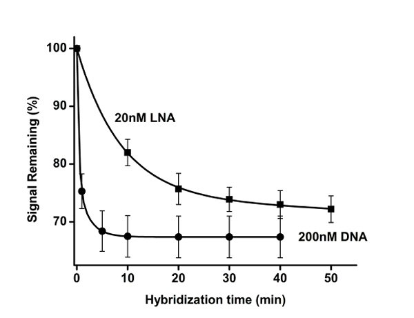 Figure 2 depicts the response of E-DNA over time to 200 nM of DNA and 20 nM of the mixed polymer of DNA and the nonnatural DNA analog, LNA.