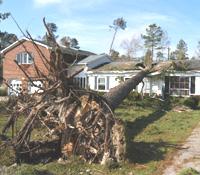 hurricane060105.jpg